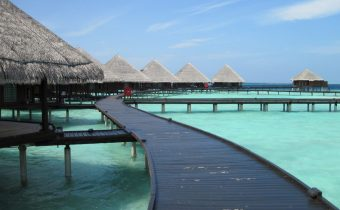 jing-daily-maldives